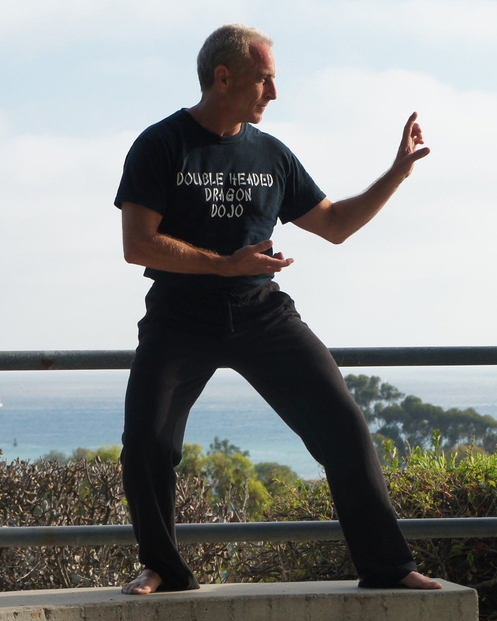 """Rob Linzy -  Instructor - Tai Chi & Wu Shu - Personal Trainer   An expert in Tai Chi and Wu Shu, as well as an author of the book """"How to Heal Yourself""""."""