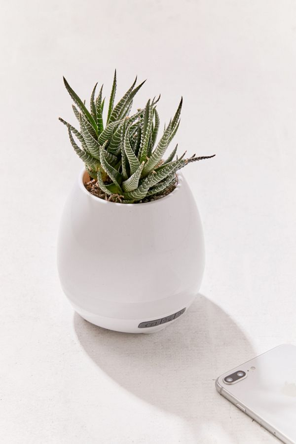 Planter Bluetooth Speaker