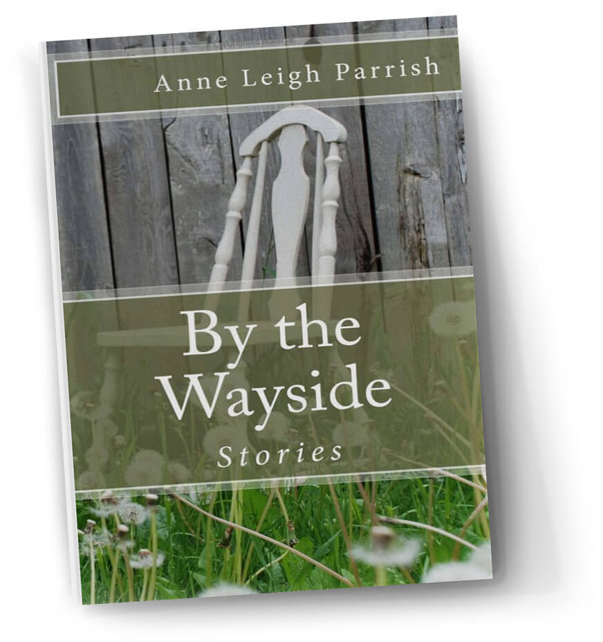 """Anne Leigh Parrish - """"Marvelous. Honest. Generous. From the first story to the last, 'By the Wayside' catches your attention and demands that you give into its every whirl. Each character unfolds with a precision that will have you wondering how Parrish managed to create such real-to-the-bones people within a world that captivates you with ease."""" —Unsolicited Press2017 International Book Awards finalist, short story category"""