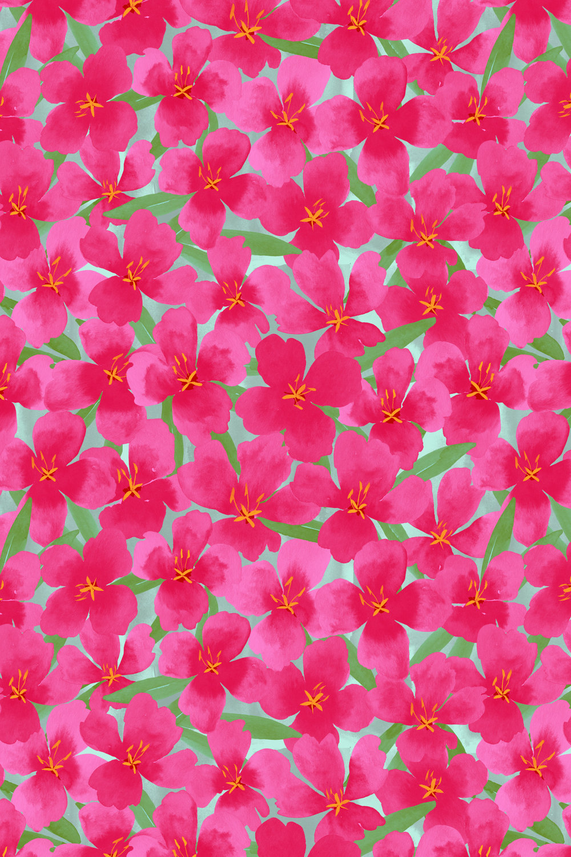 pinkflowerpatch-1500.jpg