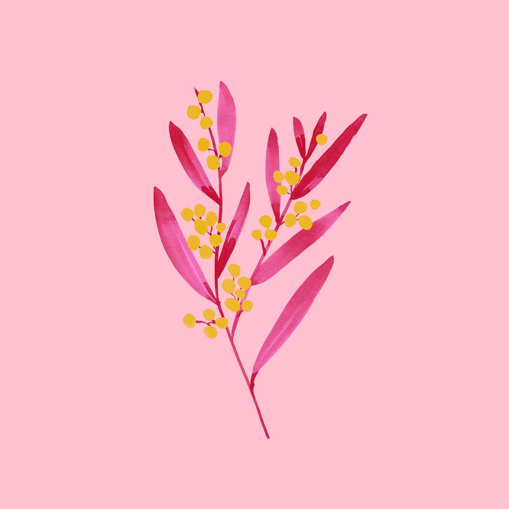 berrybranch-1500.jpg