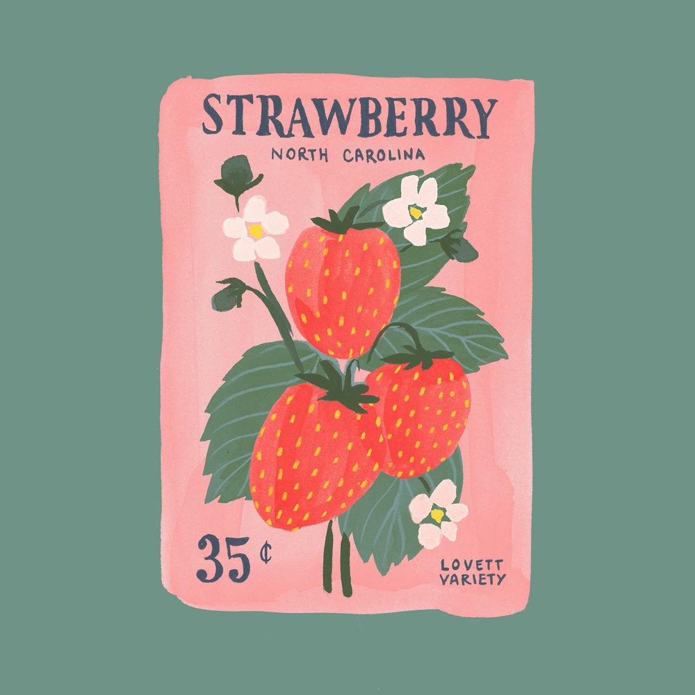 Seeds-strawberry-1500.jpg