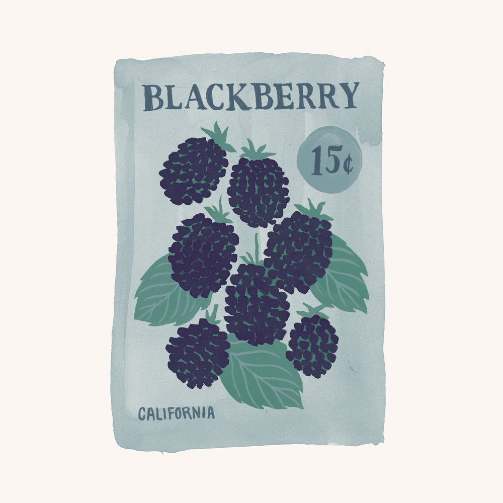 Seeds-blackberry-1500.jpg