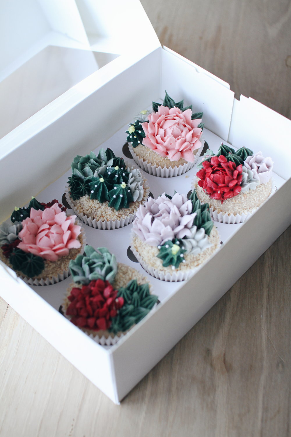 Copy of Cupcakes terarium.
