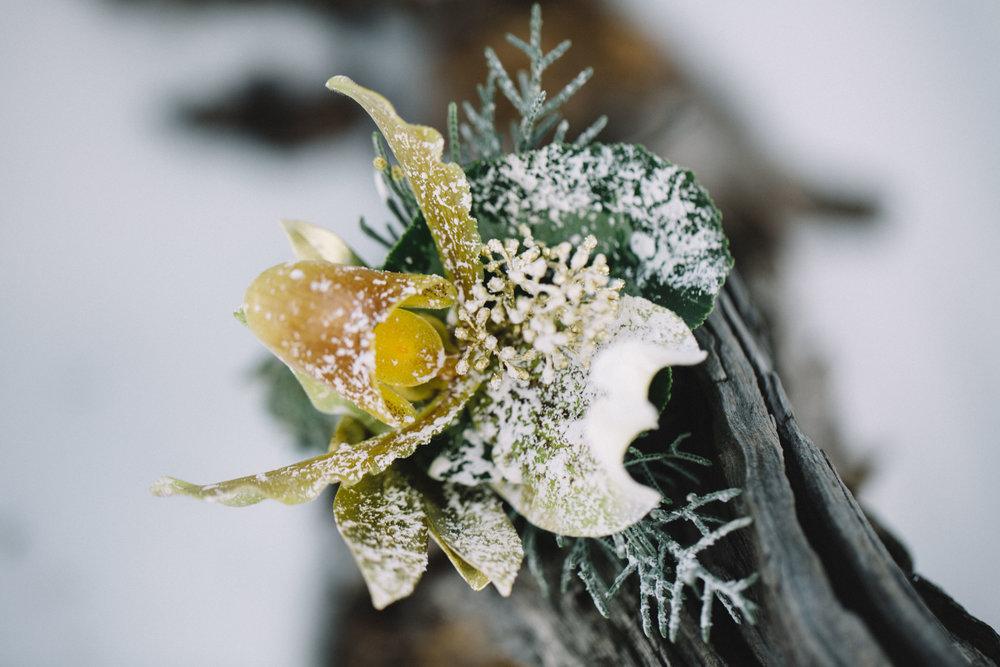 Mountain Winter Wedding 1-2.jpg