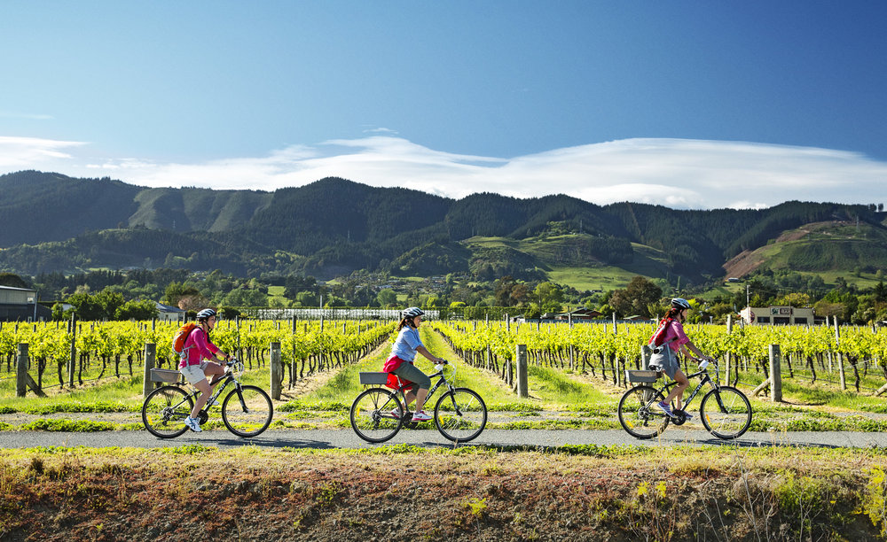 Great Taste Freedom - From $30 NZDLooking for a simple bike hire option? Just book your bikes and when you arrive at The Gentle Cycling Company we will give you maps and help you plan your route.