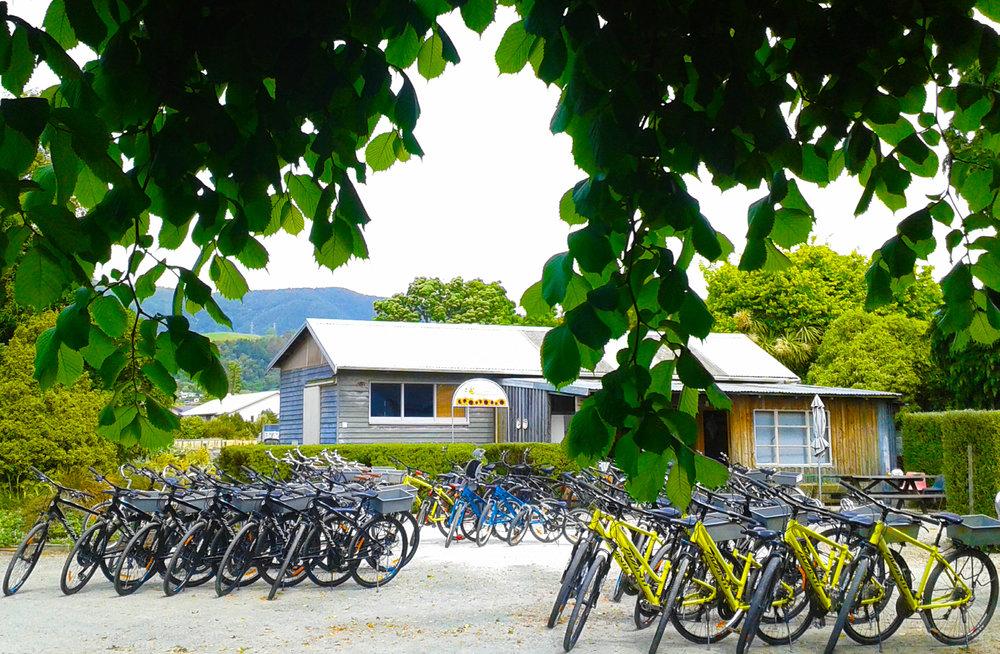 BikeBest.jpg