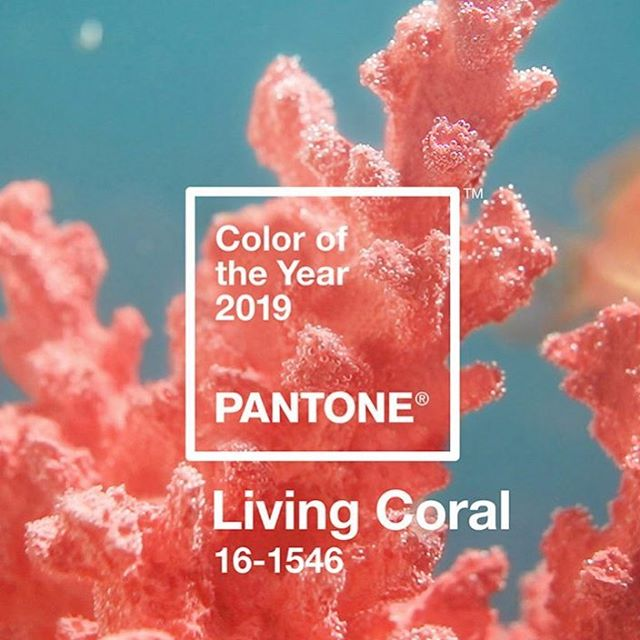 """Happy Friday everyone!  Pantone's colour of the year for 2019! #LivingCoral """"Animating and life-affirming coral hue with a golden undertone that energises and enlivens with a softer edge""""  #CreatingADesignDifference #SmallBusinessofTheYear #PantoneofTheYear"""