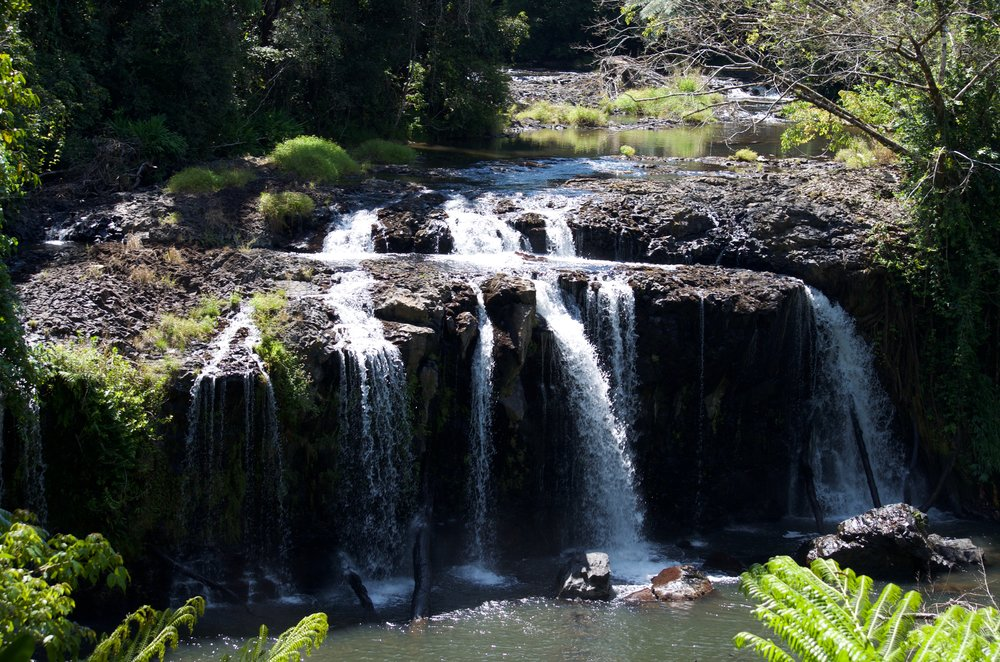 Scenic - The Cairns Hinterland region has some of the most beautiful natural resources in the world.Experience the natural beauty of world heritage listed rainforest. Sample locally grown and handmade food.If you want to get a little adventurous, get your feet wet exploring crystal clear fresh water creek crossings and hidden river beds, and, much more!