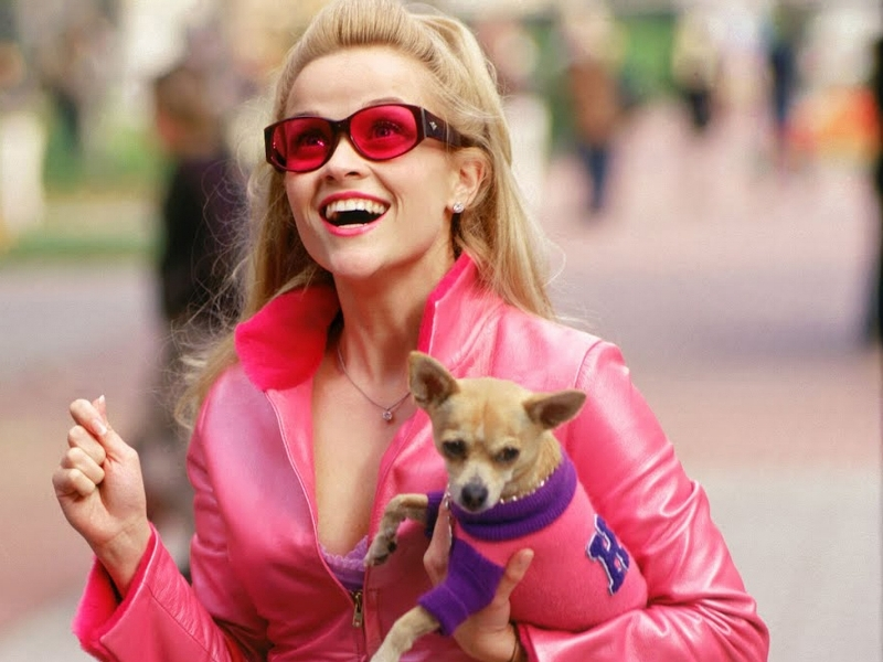"Elle Woods Sparked My 10-Year-Old Self's Feminist Awakening - I grew up in a house defined by strong, independent women — five of them, to my father's delight — but that doesn't mean that the words ""feminism"" or ""sexism"" meant a damn thing to me. Maybe I was a particularly ignorant kid, but I'm going to guess the same is true of most little girls, actually. Whsen's the last time you saw a 10-year-old girl with her nose in a copy of The Feminine Mystique? They're not a terribly woke population — yet. But, at age 10, I encountered my own Betty Friedan. She was clothed in hot-pink and dipped in sparkles, things that caught the attention of my young eyes. Elle Woods was like a real-life Barbie. While I realize the terrible irony of my first feminist role model looking like Barbie (our culture's problematic fascination with the Mattel doll deserves a lengthy analysis of its own), that's not the point. The point is that Legally Blonde was my own version of Feminism 101.We all know the story. Elle is a bubbly sorority girl whose boyfriend Warner dumps her before jetting off to Harvard Law School, because he needs a serious girlfriend now. Elle decides to prove she can be the kind of girl Warner wants by getting into Harvard Law, and that she does — studying her butt off to a 179 on her LSATs and convincing the admissions office that her vegan-panty fundraising is totally relevant. At Harvard, nobody takes Elle seriously — not her professors or her classmates, and especially not Warner's new fiancée Vivian (Selma Blair). Elle flounders but finds friends — and, ultimately, a purpose much greater than getting her boyfriend back: helping to defend a fitness icon (Ali Larter) in a tough case...READ ON R29"