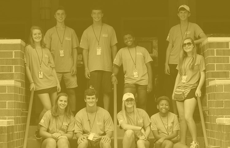 Meet our staff -