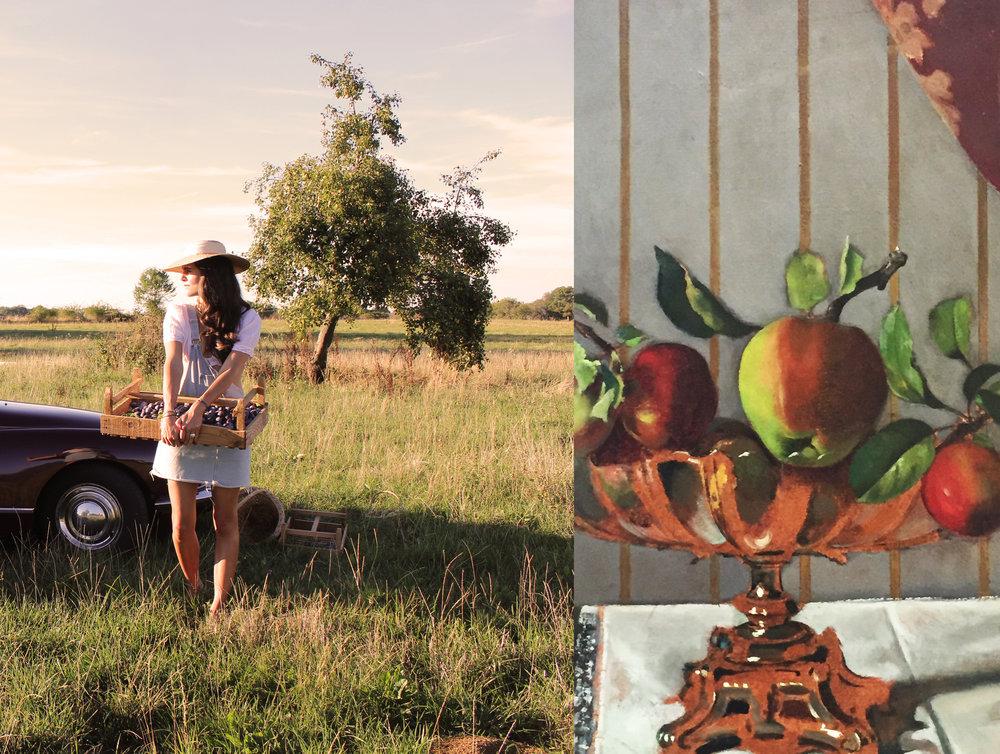 Harvest season - Abundance