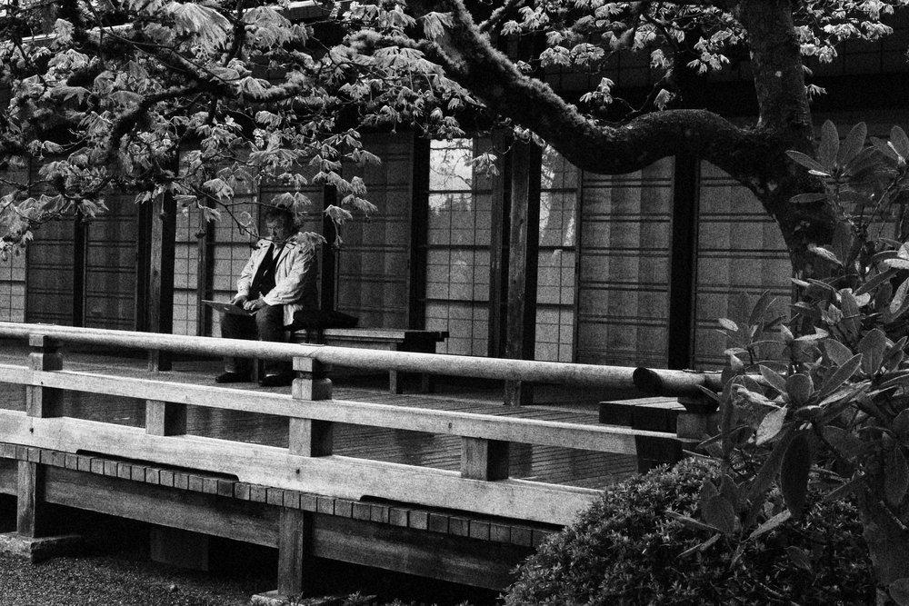 Portland_JapaneseGardens.JPG