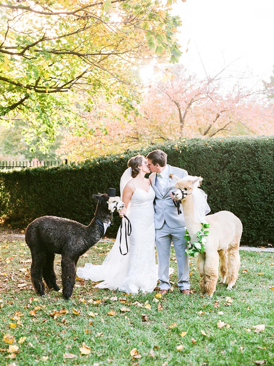 Colorful-Fall-Wedding-DC-Photographer-135.jpg