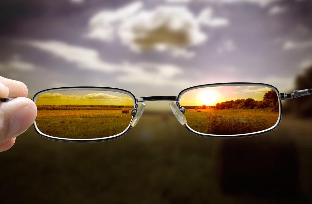 eye_glasses_focus_nature_web.jpg