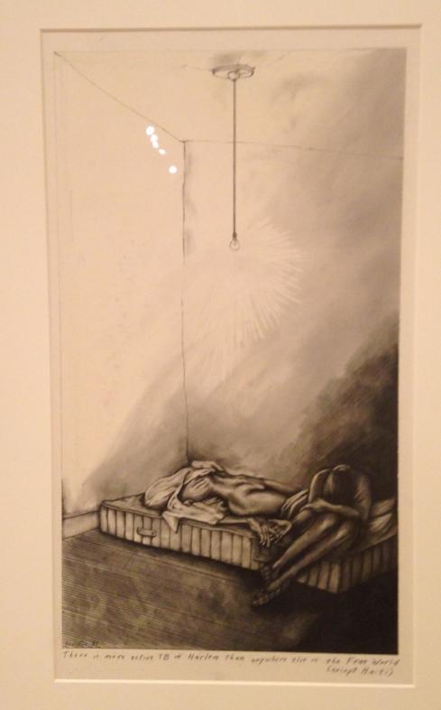 SueCoe_less_than_half_woman_artist_malaria.JPG