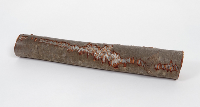 Untitled (SC 2014- 6) , 2014 log,textile, metal staples 3.5 x 16 x 3.5 inches  Photo by Alan Wiener
