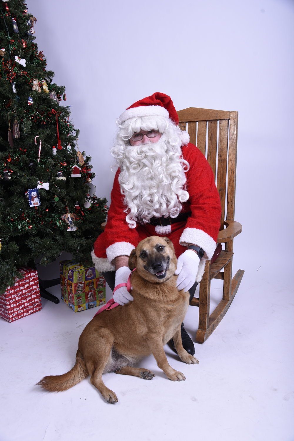 PICS WITH SANTA AND YOUR FAMILY INCLUDING FURKIDS DECEMBER 16TH FROM 2PM TO 4PM AT KNOX-WHITLEY ANIMAL SHELTER $10 DONATION GETS EITHER AN 8X10 OR 2 5X7's Snacks and punch provided.