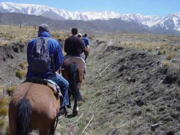mendoza-horse-line.jpg