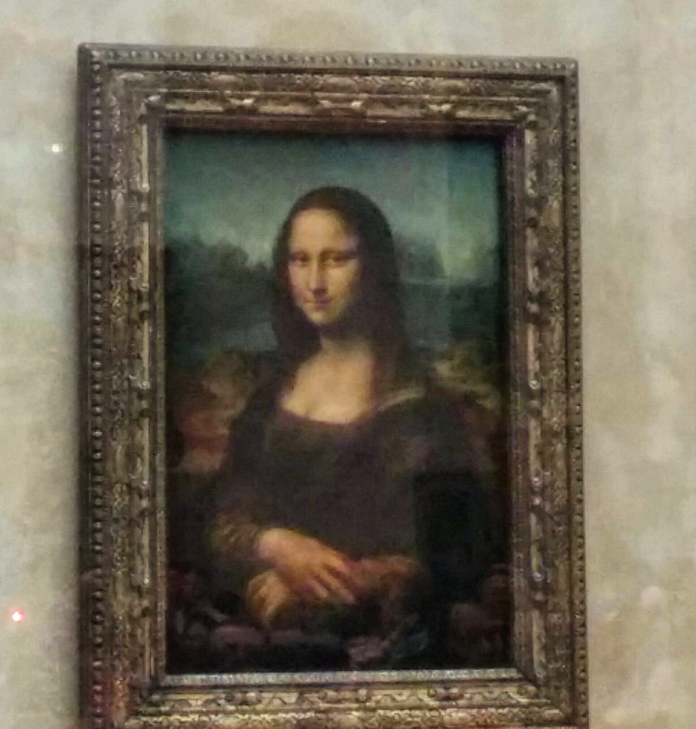 The best capture I could get of the Mona Lisa, fighting for a shot along with flow after flow of tourist groups crowding the area to get a shot. I honestly just wanted to look at the work and gaze at a renowned masterpiece more than take a picture.