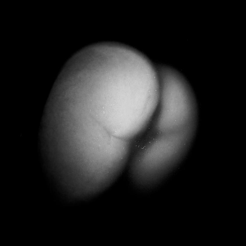 butt1.jpg
