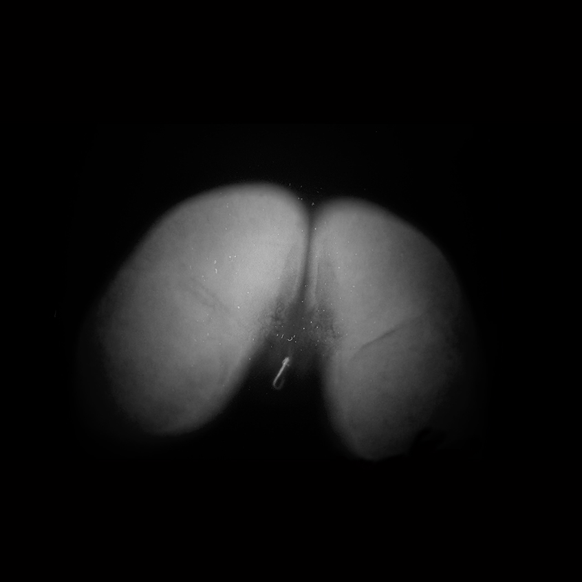butt6.jpg