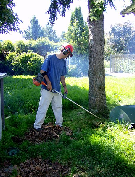 Picture of a man clearing long grass with a string trimmer taken in June of 2007 by David R. Yeo.