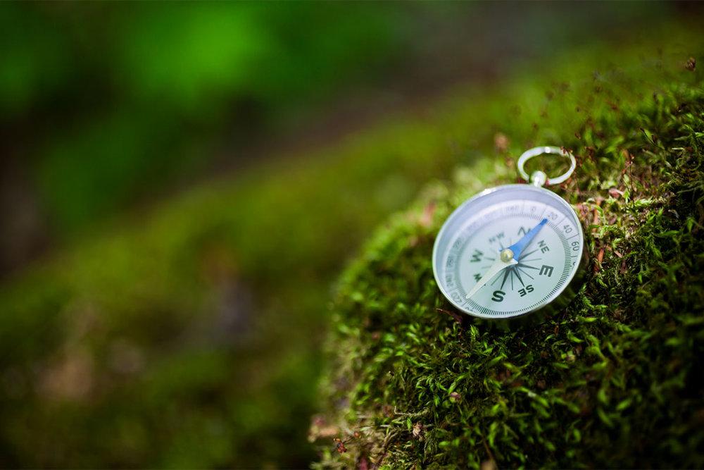 compassgreen.jpg