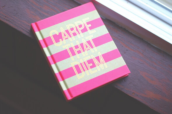 "$2 Journal ""Carpe That Diem"" // Lydia Lois - Lifestyle Blogger"