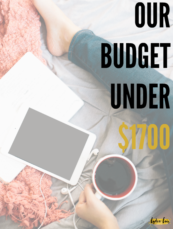 Feel like it is impossible to live off basically minimum wage while still living comfortably? Think pinching pennies sounds a lot like going without the things you want? Think again! Click through to find out how we live on a tiny budget, save hundreds, and still give to others in the process! Our budget under $1700