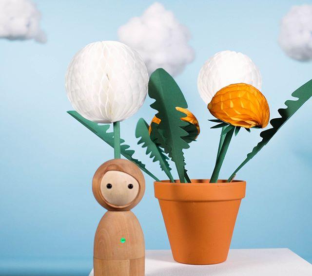 #tbt creating summer in November too🌻🌞☁️ . . #vaikai #kidsfashion #ecofriendly #organic #kidsdesign #kidsdecor #play #ecodesign #simplicity #toys #toy #woodentoys #madeineurope #handmade #iot #berlin #design #lessismore #theartofslowliving #throwback #design #autumn #colours #summer