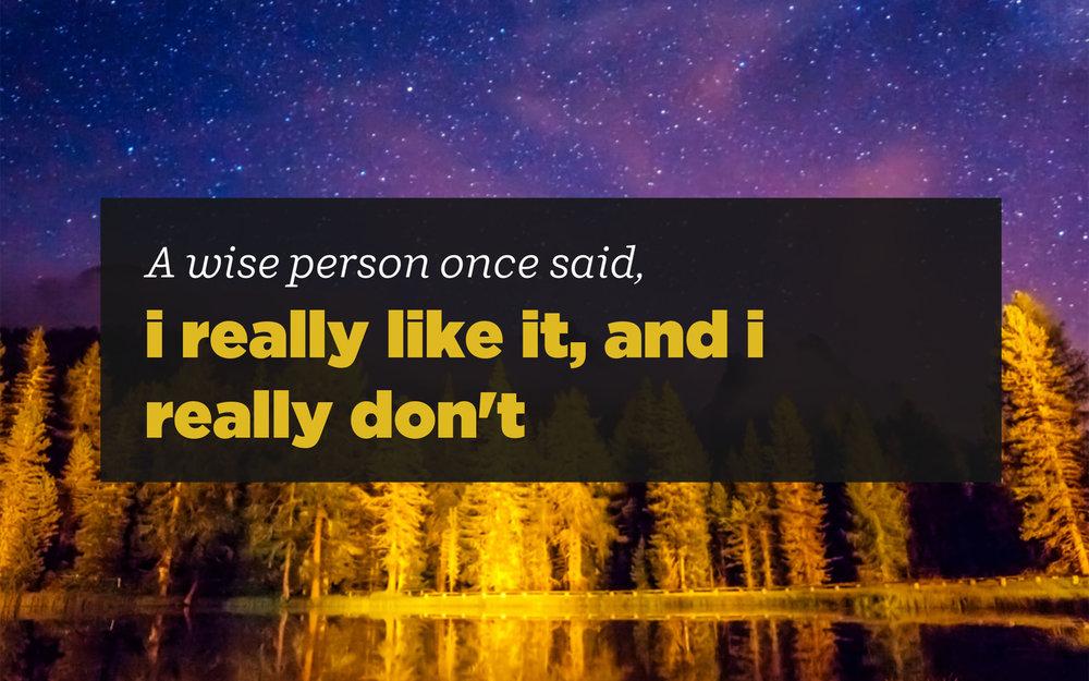 I_Really_Like_It.jpg
