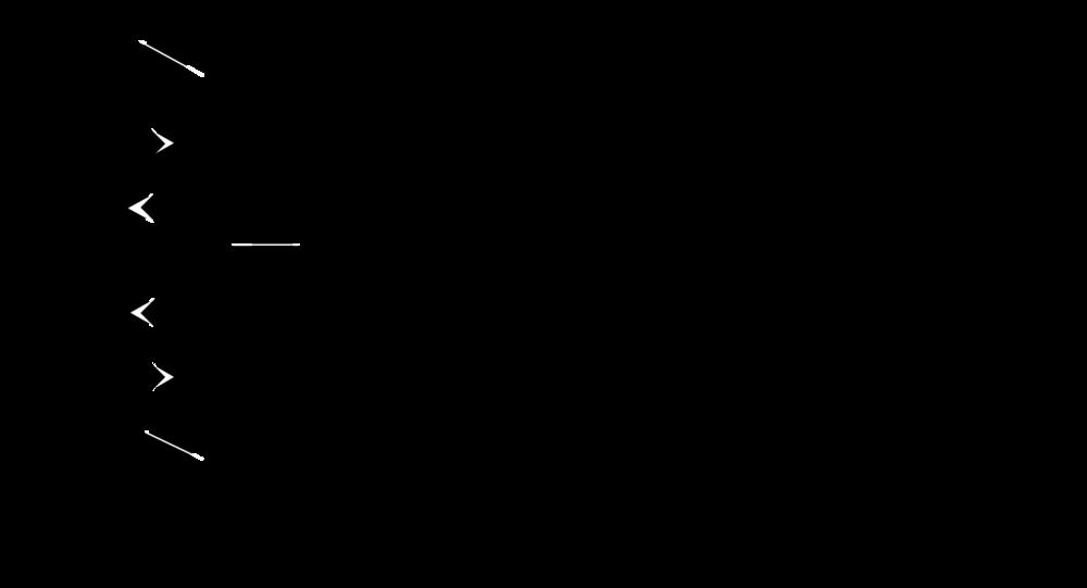 BWPG_logo_Bl.png
