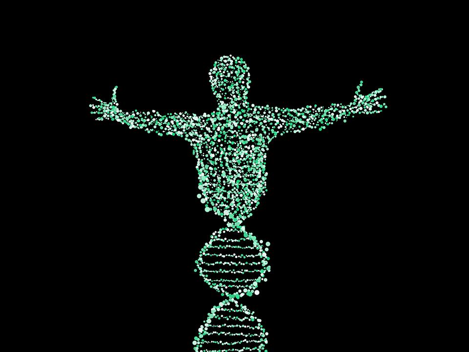 MTB - Molecular Tumor Board 2