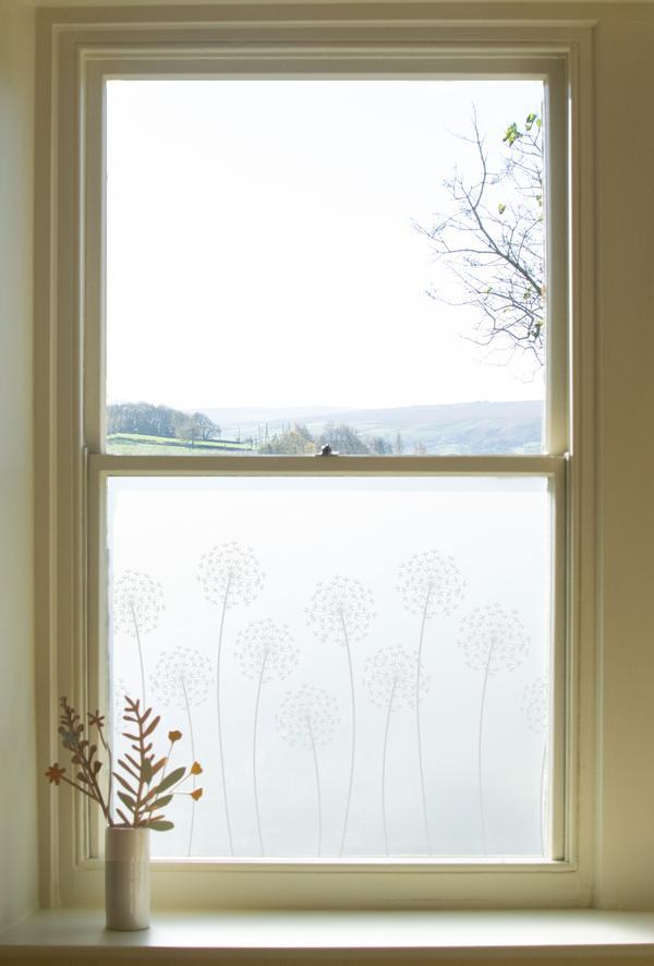 Hannah Nunn Allium window film (from £30) -  Link here