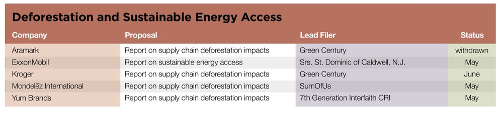 Deforestation and Sustainable Energy Access.jpg