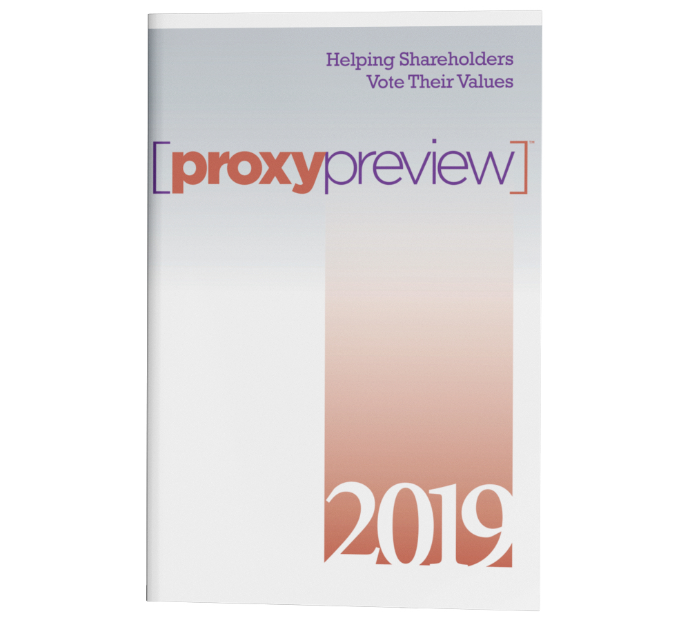 Proxy Preview 2019 PDF cover
