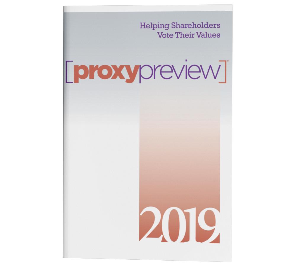 Proxy Preview 2019 PDF cover