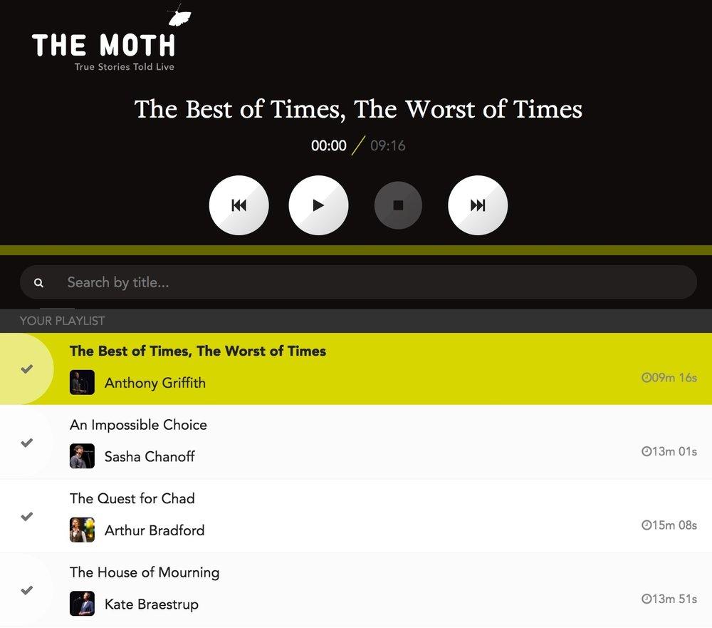the moth 3.jpg