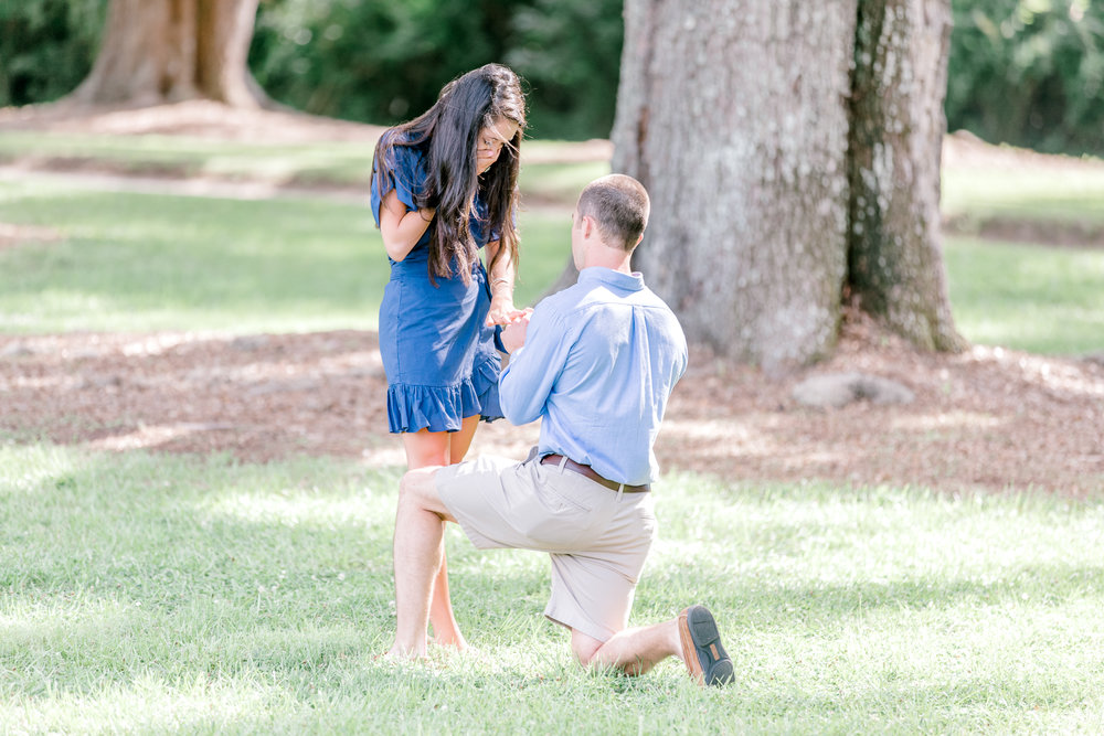 Proposal - Starting at $400120 minutes Edited images typically 85-120 images delivered