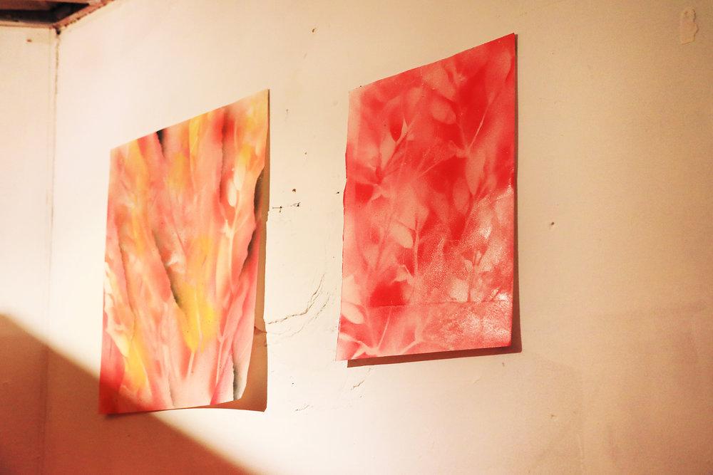 Aaron Cowan - Frequency Arts (21).jpg