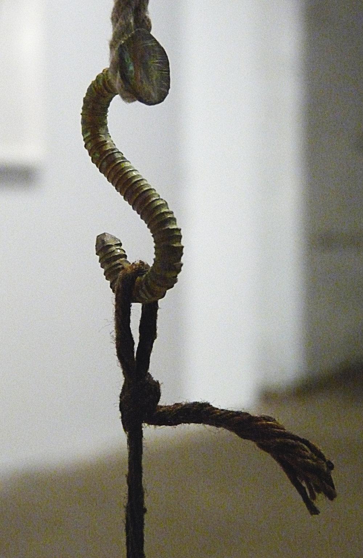 Hook-1-300.JPG
