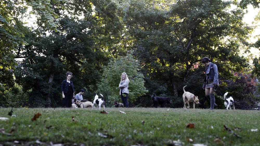 Dogs_Portland.jpg