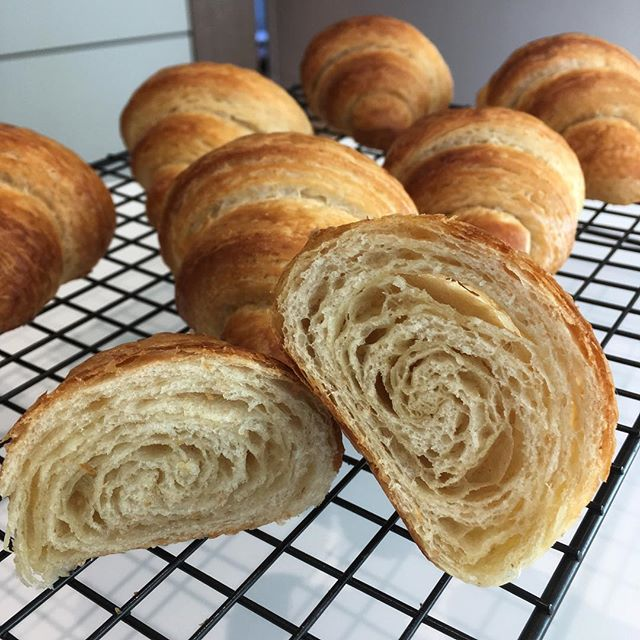 Slow and steady wins the race . Finally gotten my act together and made laminated dough for the first time. Have to thank @michaeljamesbakes for the incredible @tivolirdbakery book. Would highly recommend it to any keen bakers out there, definitely one of my top baking books! . . #homebaking #weekendbaking #bakingproject #laminateddough #crossaint #lamination #bakinggoals #tivoliroadbakery #cantstopbaking #gottodoitonce #tmdevkitchen
