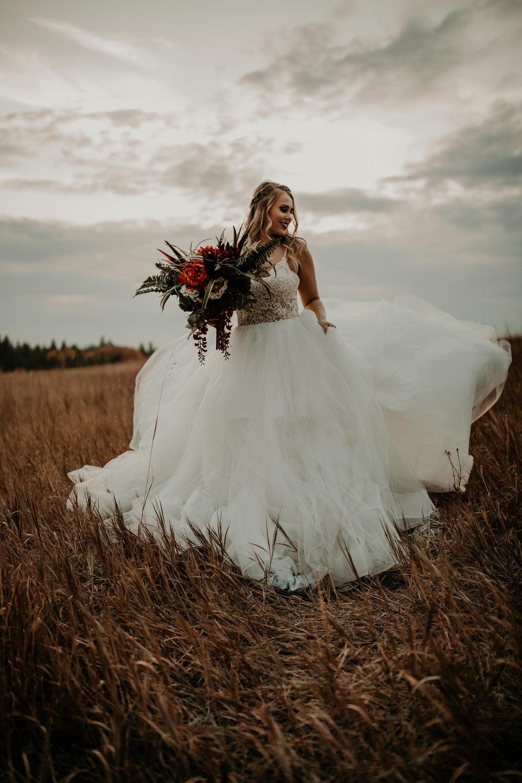 evening sky fall bridal photo shoot image