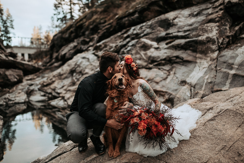 bridal shoot with puppy golden retriever dog Spokane WA