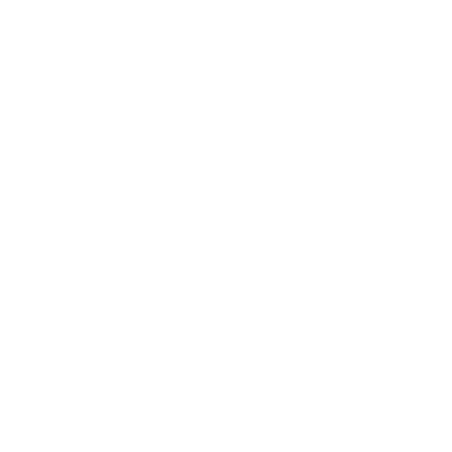 The Noll Team