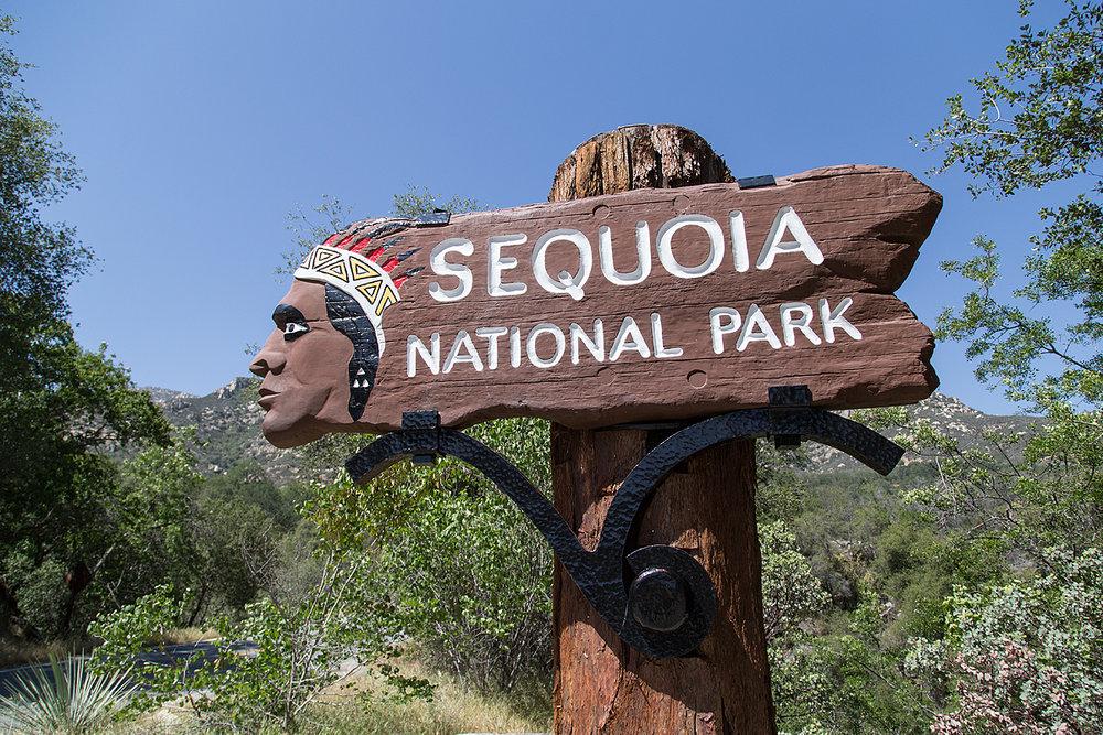 SequoiaNPSign.jpg