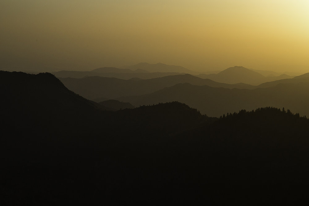 SequoiaSunset1.jpg
