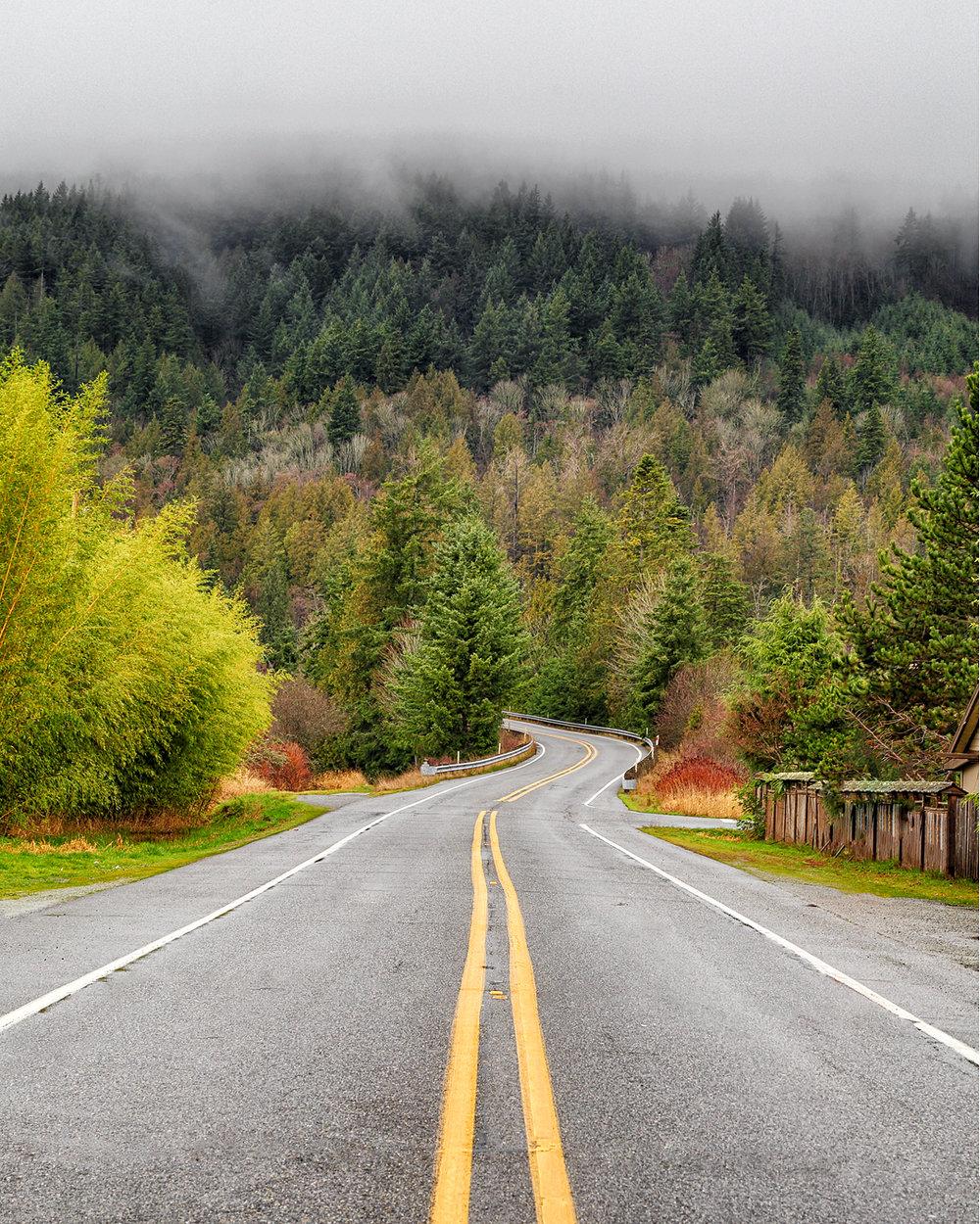 roadsenic.jpg